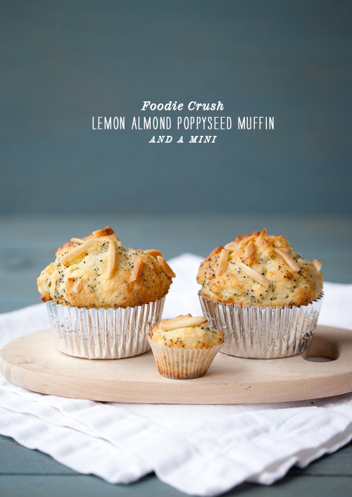 Post image for Lemon Almond Poppyseed Muffin Mania