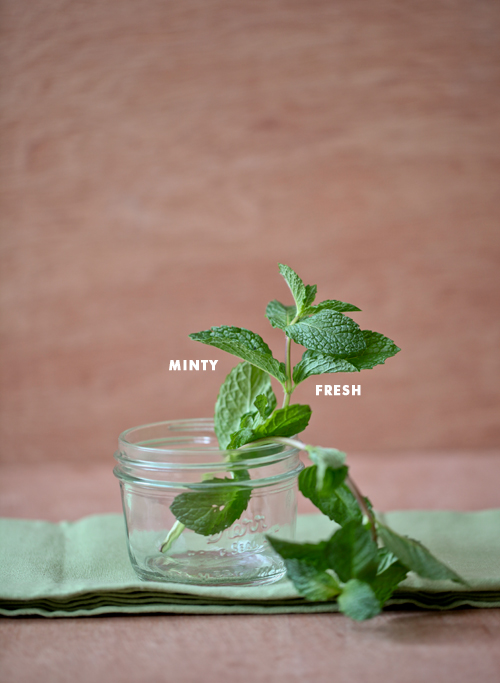Foodie Crush Mint