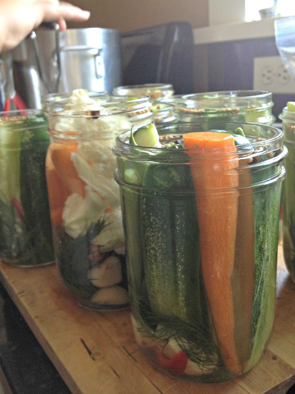 canning-quick-refrigerator-pickles