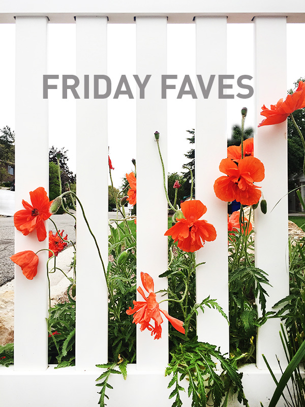 Friday-Faves