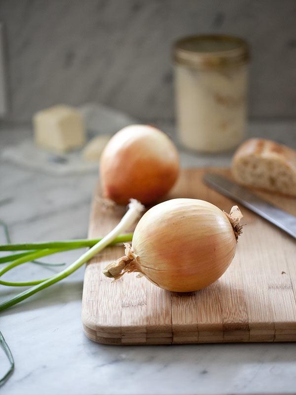 Cheesey Chorizo Caramelized Onion Dip | FoodieCrush.com