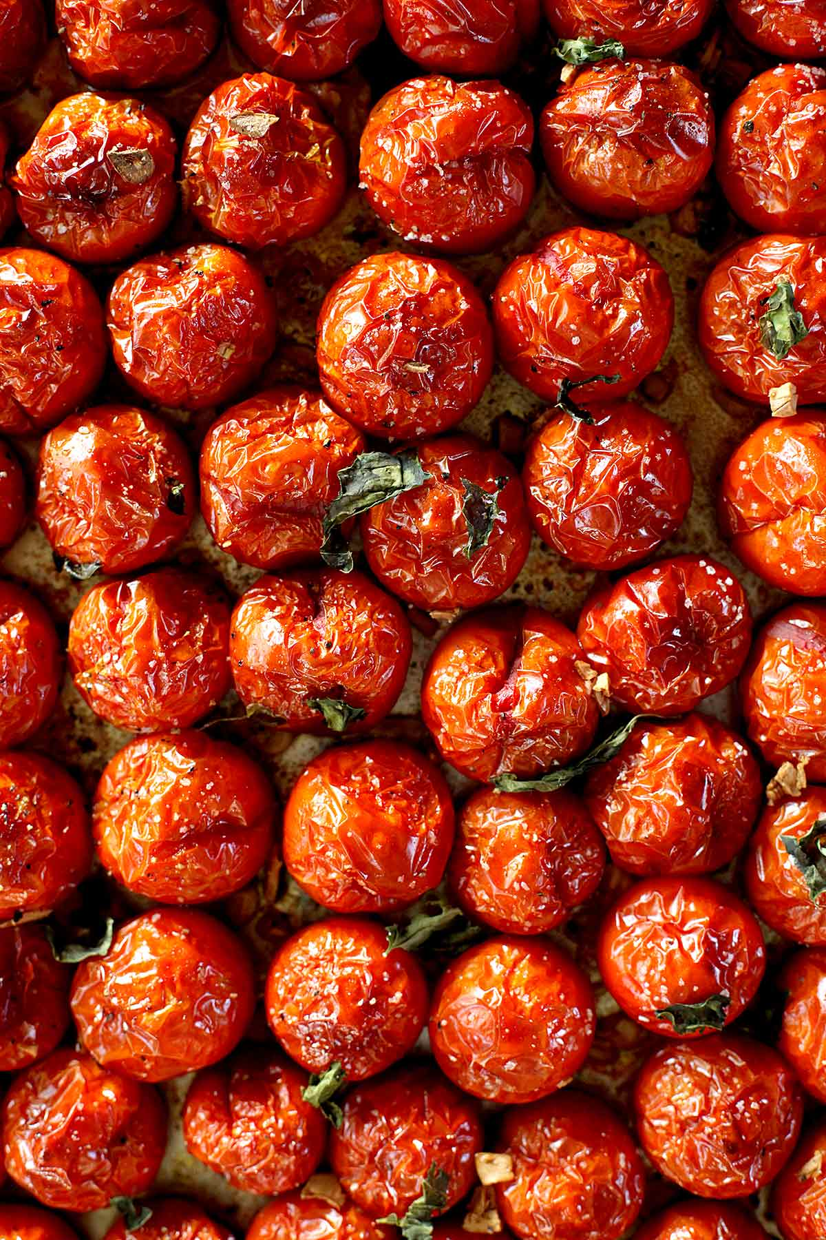 Easy Quick Roasted Tomatoes | foodiecrush com