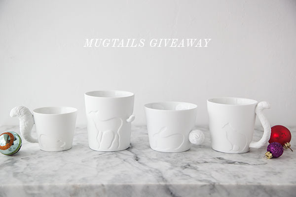 Korin Mugtails Giveaway || FoodieCrush.com