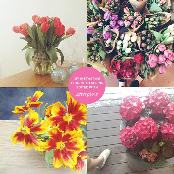 flower-instagram