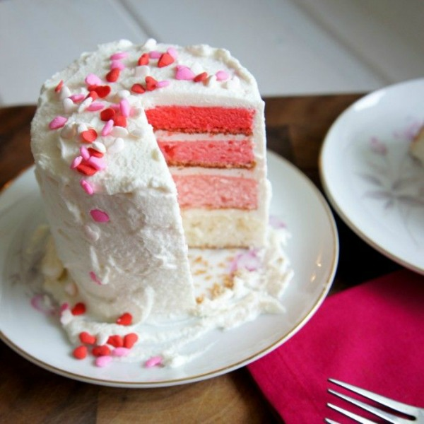 Pink Ombre Cake for Two II I Wash You Dry