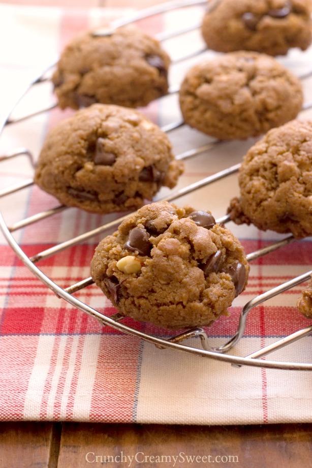 Peanut-Butter-Chocolate-Granola-Cookies1