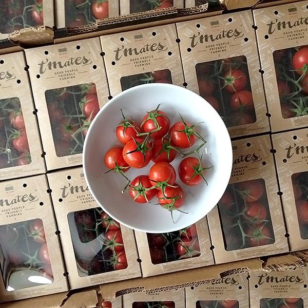 Tmates-tomatoes-foodiecrush.com