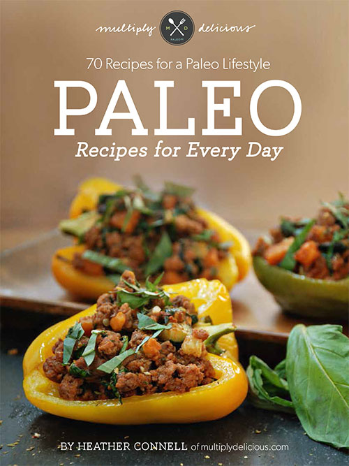 Paleo-Recipes-Every-Day-Cov