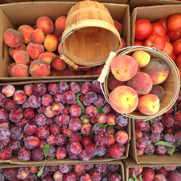 peaches-foodiecrush-com