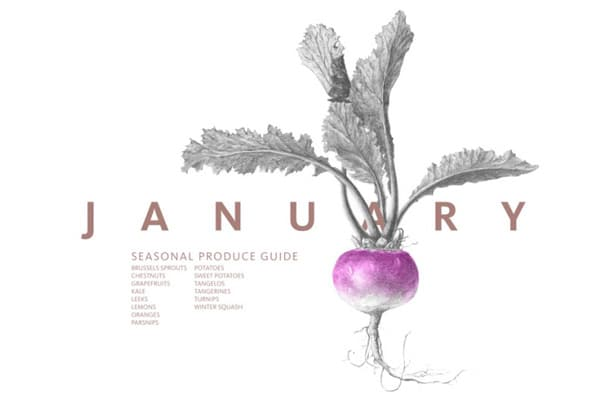 Eat Seasonal Produce Guide from The Vintage Mixer on foodiecrush.com