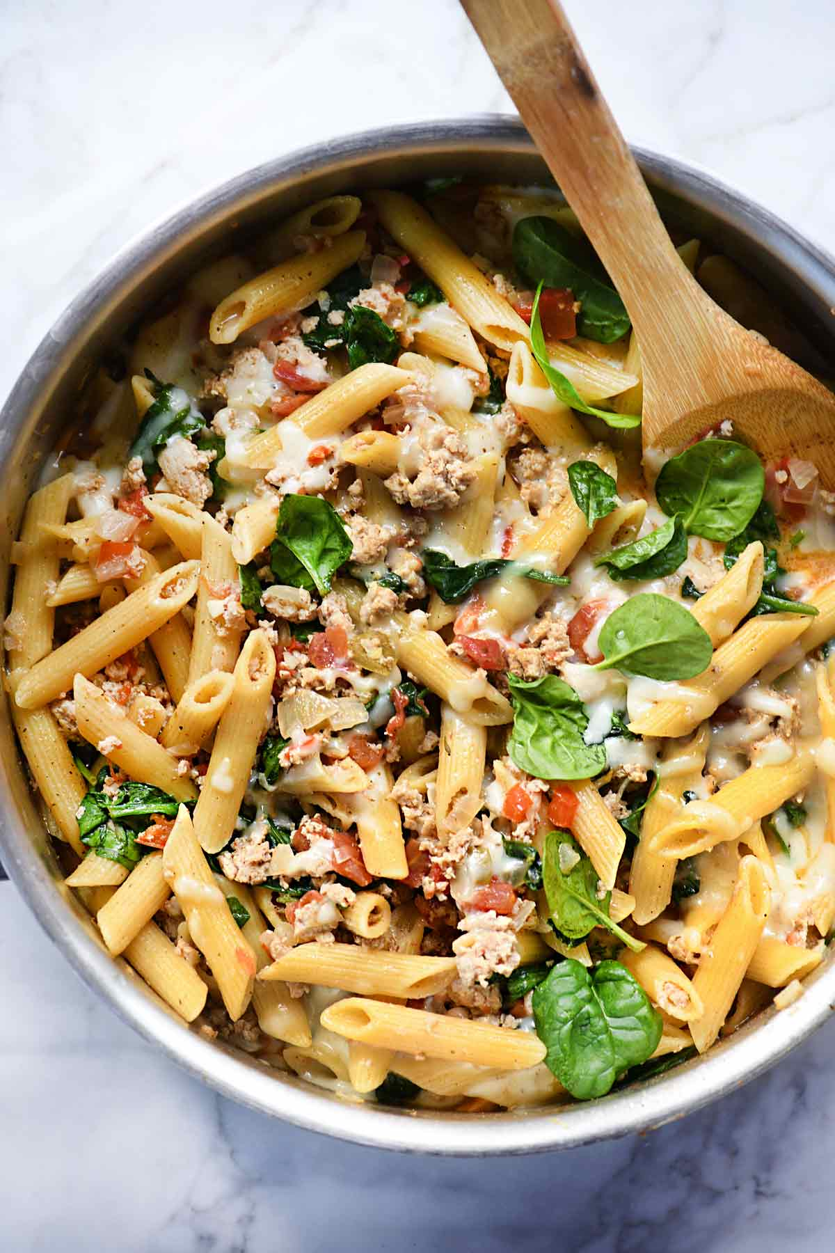 One pot penne pasta with turkey and spinach foodiecrush one pot penne pasta with turkey and spinach foodiecrush recipes forumfinder Choice Image