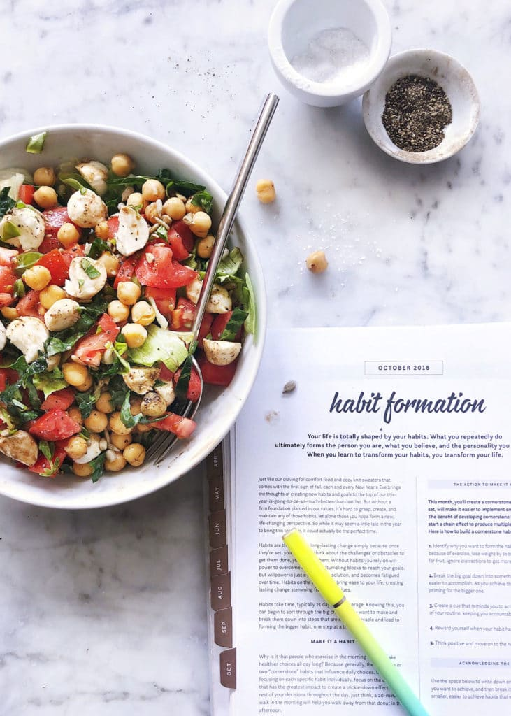 Habit Formation Nourished Planner | foodiecrush.com